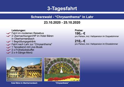 Schwarzwald – Chrysanthema – Lahr